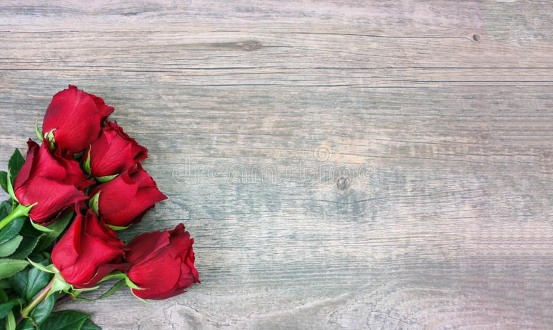 Valentine`s Day Red Roses Over Wood Background royalty free stock images