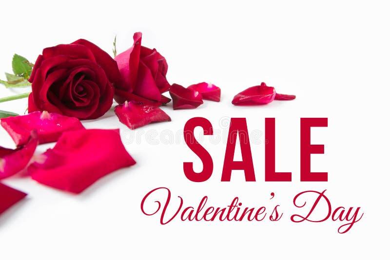 Valentine`s Day royalty free stock photo