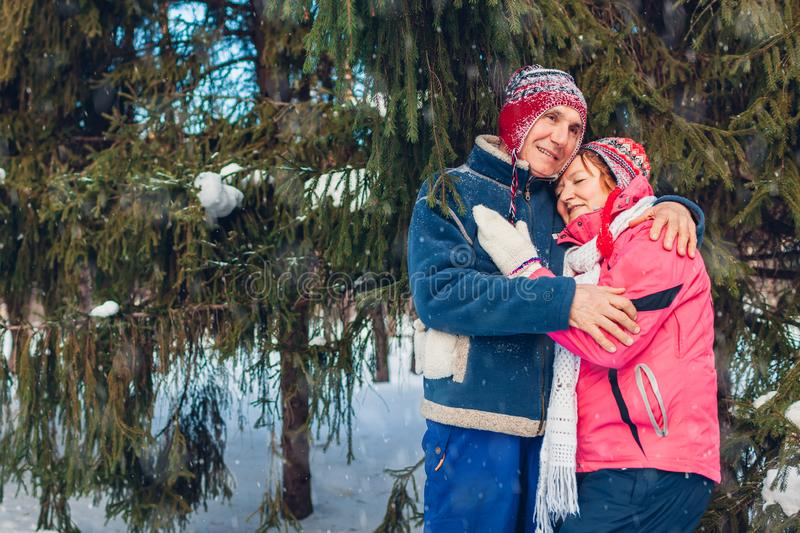 Valentine`s Day. Senior family couple hugging in winter forest. Happy man and woman walking outdoors royalty free stock image