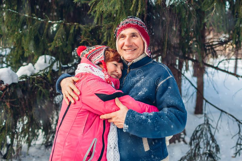 Valentine`s Day. Senior family couple hugging in winter forest. Happy man and woman walking outdoors royalty free stock photo