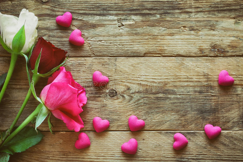Valentine`s day, three white pink and burgundy roses, stock photos
