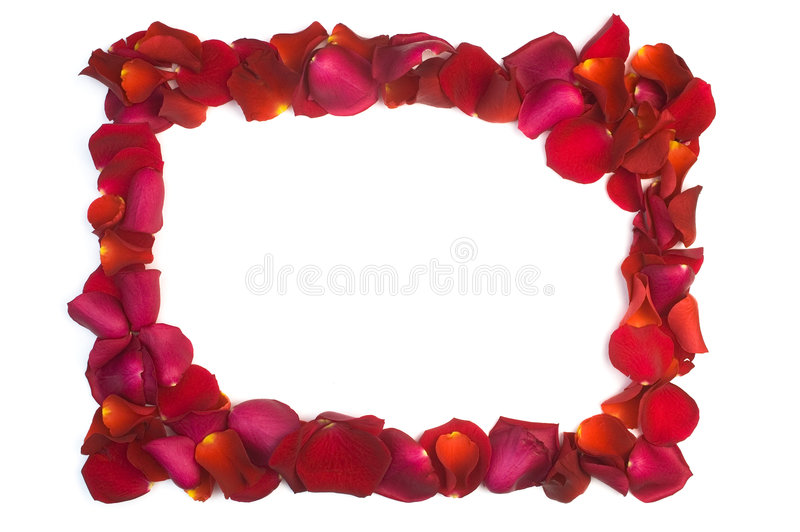 Download Valentine's greetings card stock image. Image of frame - 3971979