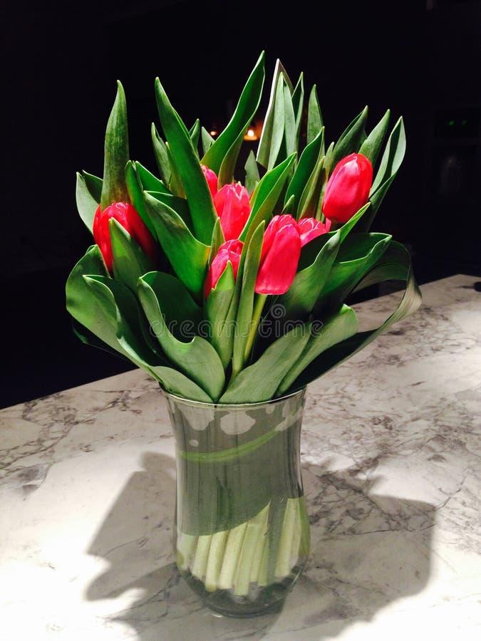 Valentine's Tulips royalty free stock photos