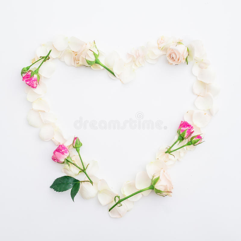 Valentines background. Heart symbol of roses petals on white background. Flat lay, Top view. royalty free stock images