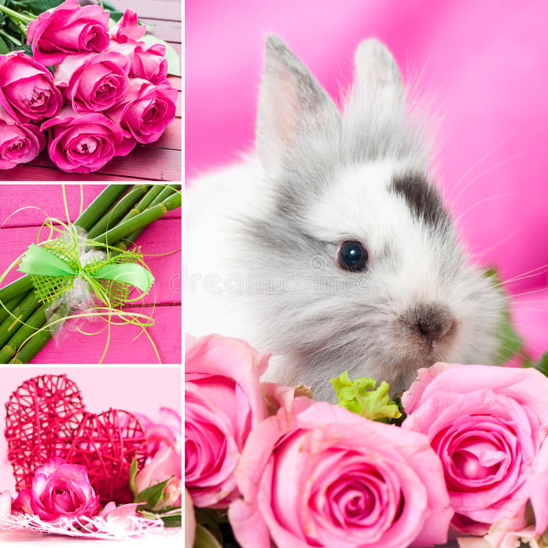 Download Valentines Collage Stock Photo - Image: 37859850