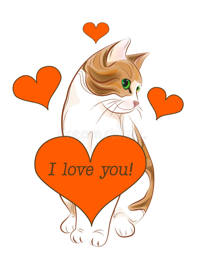 Valentines day greeting card. With tabby cat and heart vector illustration