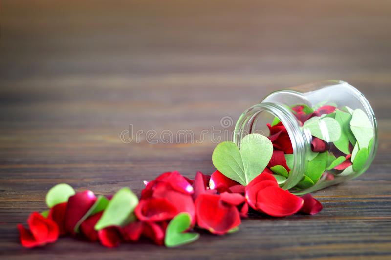 Valentines Day. Heart shaped leaves in the jar stock photography