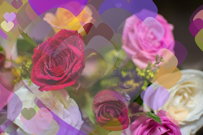 Happy Valentines Day Hearts Flowers Theme Background Card Design. Happy Valentines Day Hearts and Flowers of different size Theme Background Card Design for royalty free stock image