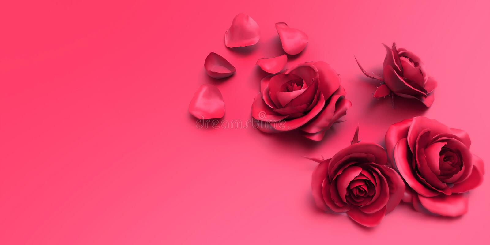 Valentines day Love Roses and Petals on pink background stock images