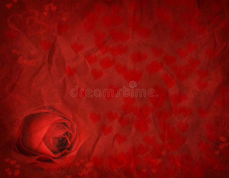 Download Valentines Rose stock image. Image of silk, happy, like - 22642819