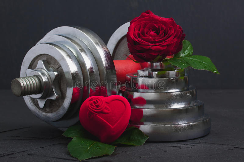 Valentines sports background with dumbbell, rose and heart box. royalty free stock photos