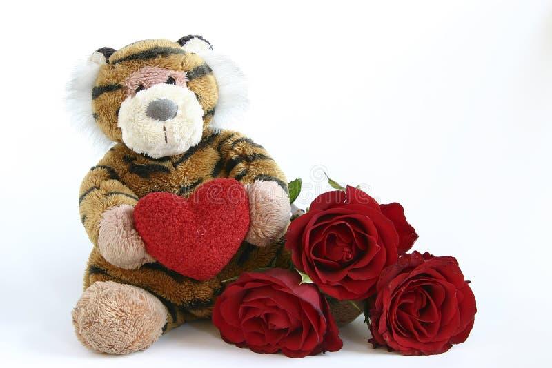 Download Valentines tiger stock image. Image of flowers, celebration - 1803243