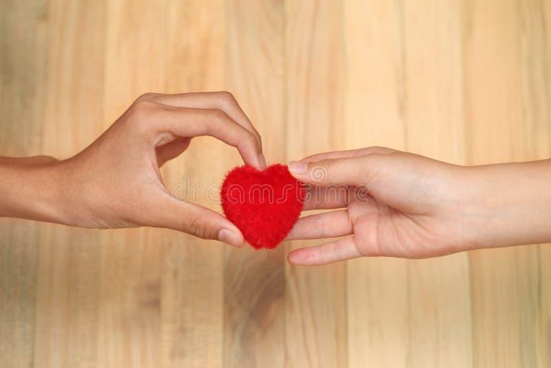 Valentinhjärta i man- och kvinnlighänder Kvinnligt ge sig för hand hör arkivfoton