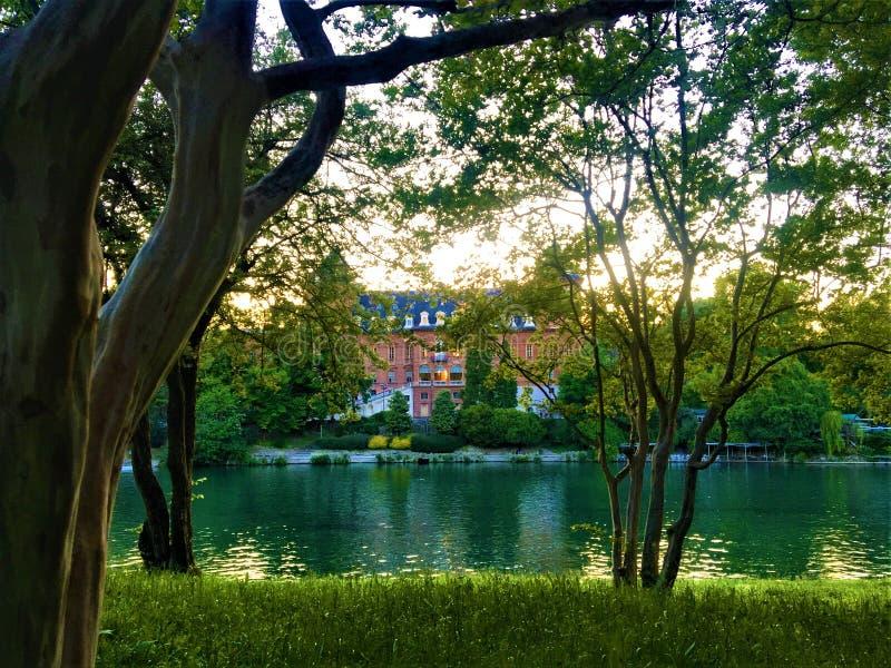 Valentino Castle e parque, árvores e luz na cidade de Turin, Itália foto de stock royalty free