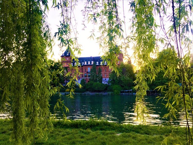Valentino Castle e parque, salgueiro chorando e luz na cidade de Turin, Itália imagens de stock