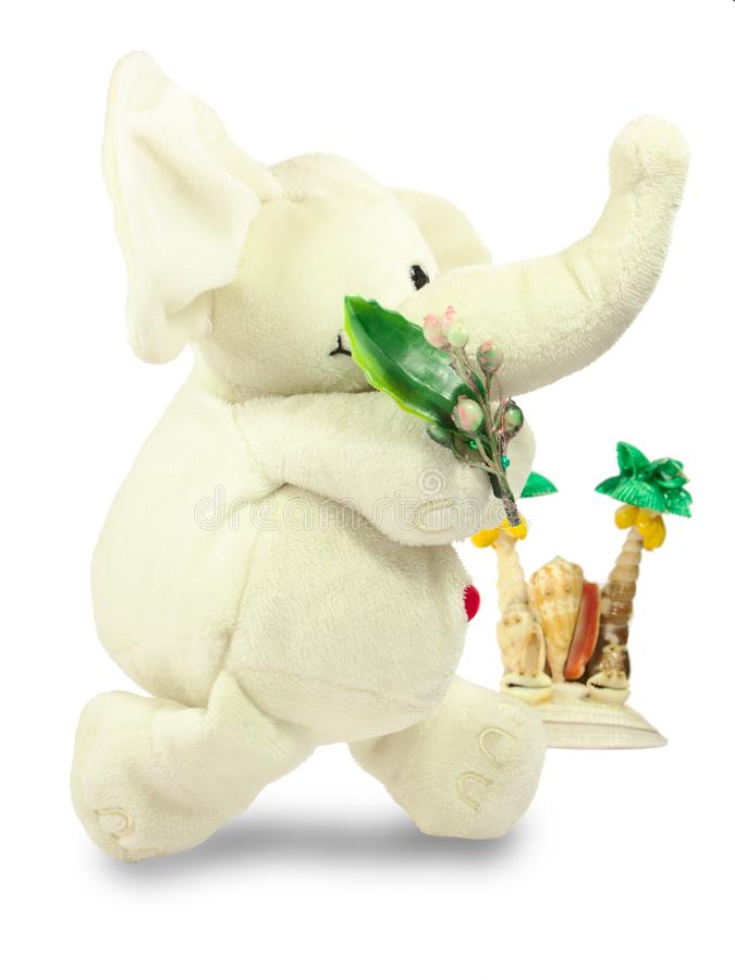 Valentins dag, en röd hjärta, en vit flott elefant, bär en grön filial, en ö av skal royaltyfri fotografi