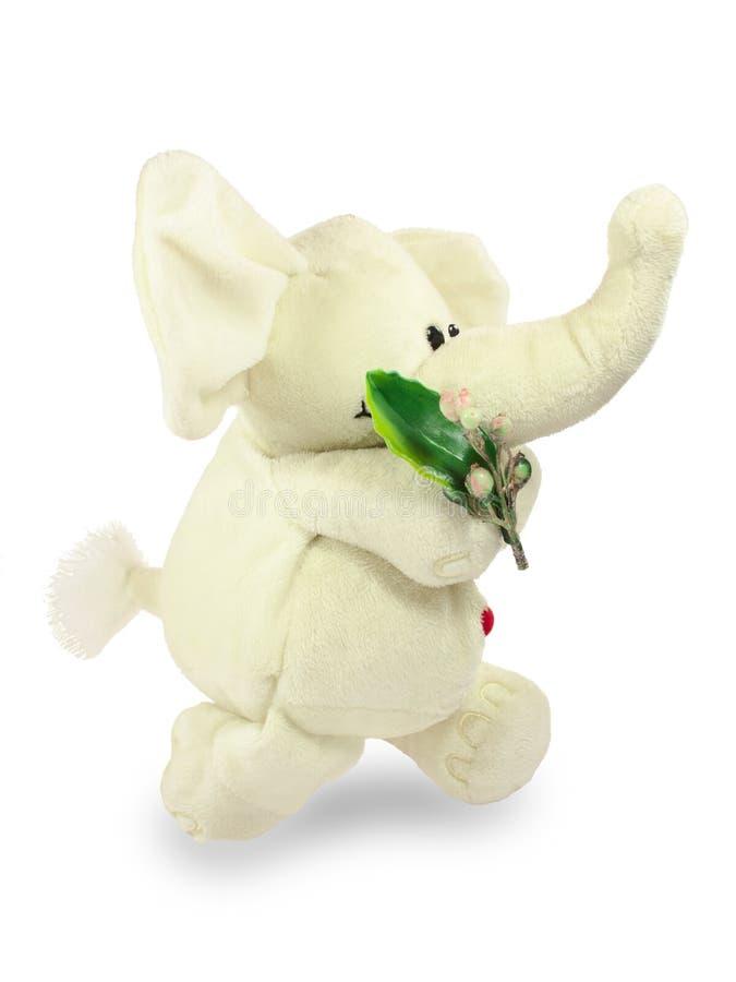 Valentins dag, röd hjärta, den vita flotta elefanten, går med en grön filial royaltyfri bild