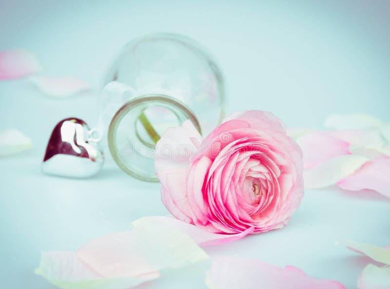 Valentinsgrußtageskarte mit Rosarose und Herz auf blauem Hintergrund stockfoto