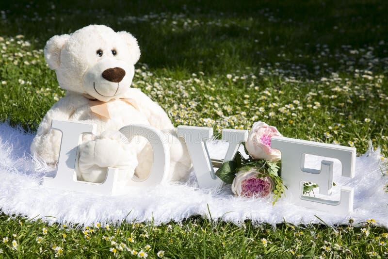 Valentinstag und Liebe, Plüschbären für Liebhaber und eine Wiese voll von Gänseblümchen lizenzfreie stockfotos