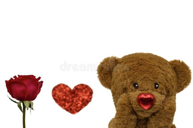 Valentinstaghintergrund mit Teddybären und Rose stockfoto