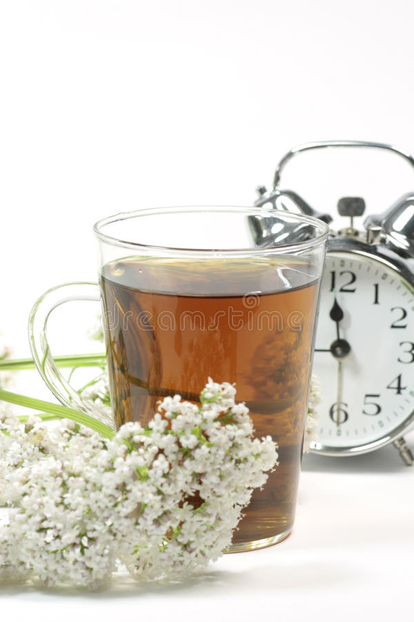 Valerian tea royalty free stock photo
