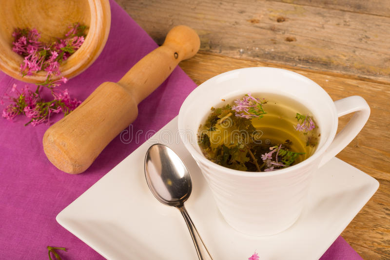 Valerian tea stock photo