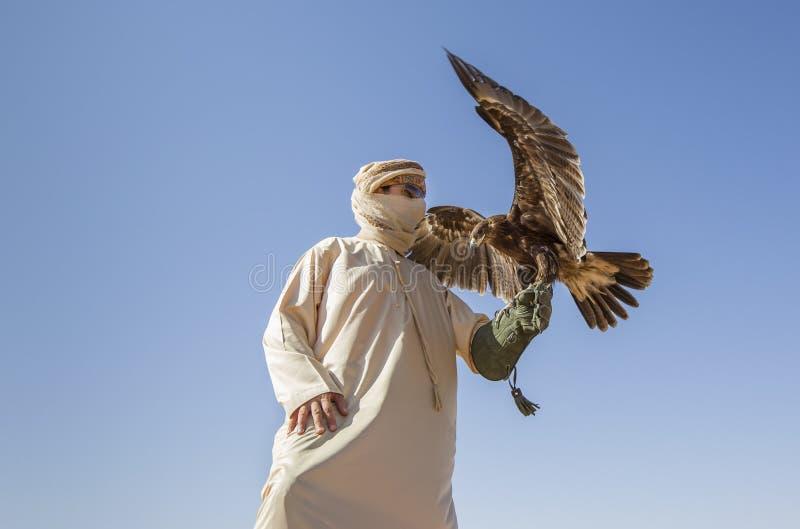 Valkenier met een adelaar in een woestijn dichtbij Doubai stock afbeeldingen