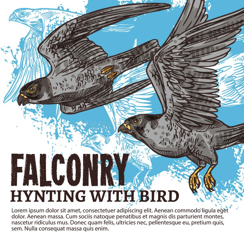 Valkerij de jacht, wilde valkvogels stock illustratie