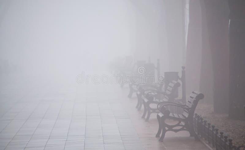 Vallée avec des bancs dans le brouillard photo stock