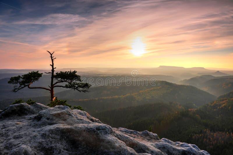 Vallée brumeuse d'automne complètement de vue de brume de matin par des branches Aube brumeuse et brumeuse sur le point de vue de image libre de droits