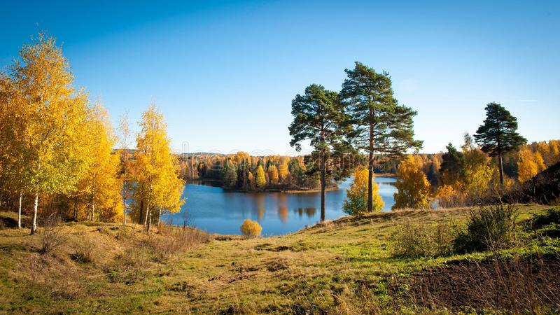 Vallée colorée d'automne image stock