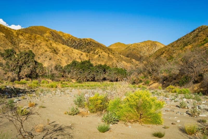 Vallée de désert en montagnes de la Californie images stock