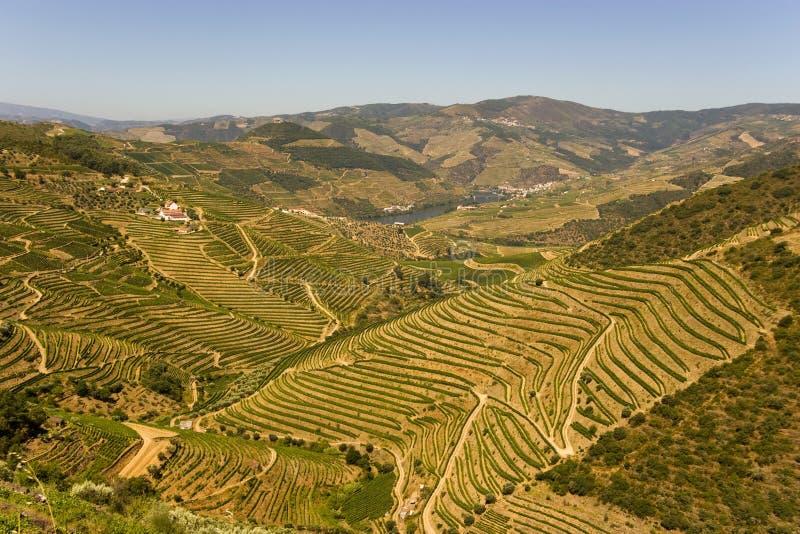 Vallée de Douro image libre de droits