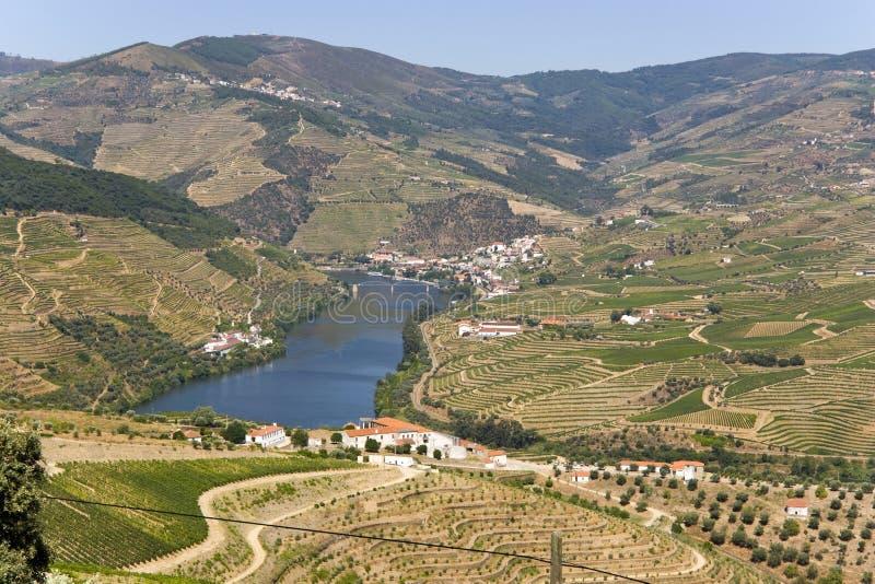Vallée de Douro photo stock