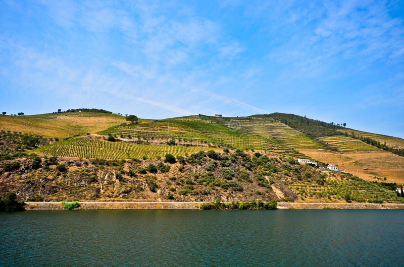Vallée de Douro : Rive de Duero avec des vignobles près de Pinhao, Portugal photo stock
