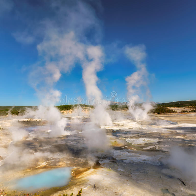 Vallée de geysers en Norris Geyser Basin, parc national de Yellowstone photographie stock