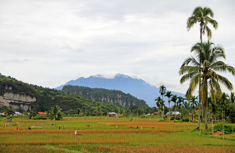 Vallée de Harau dans Sumatra occidental, Indonésie image stock