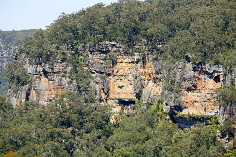 Vallée de kangourou photographie stock