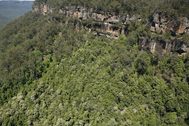 Vallée de kangourou image stock