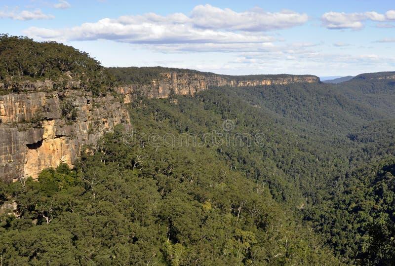 Vallée de kangourou photo stock
