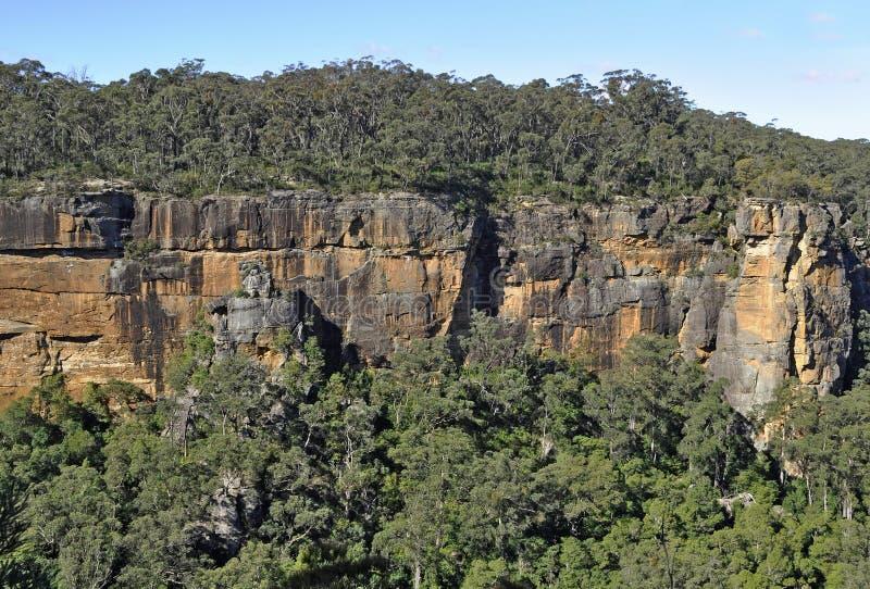 Vallée de kangourou image libre de droits