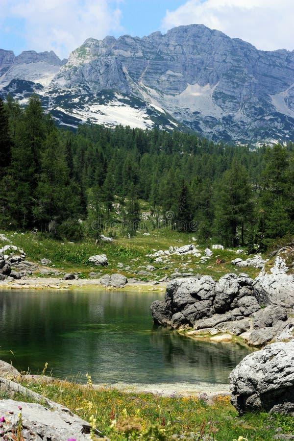 Vallée de lacs Triglav photo stock