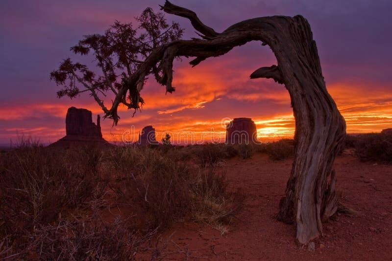 vallée de lever de soleil de monument photo libre de droits
