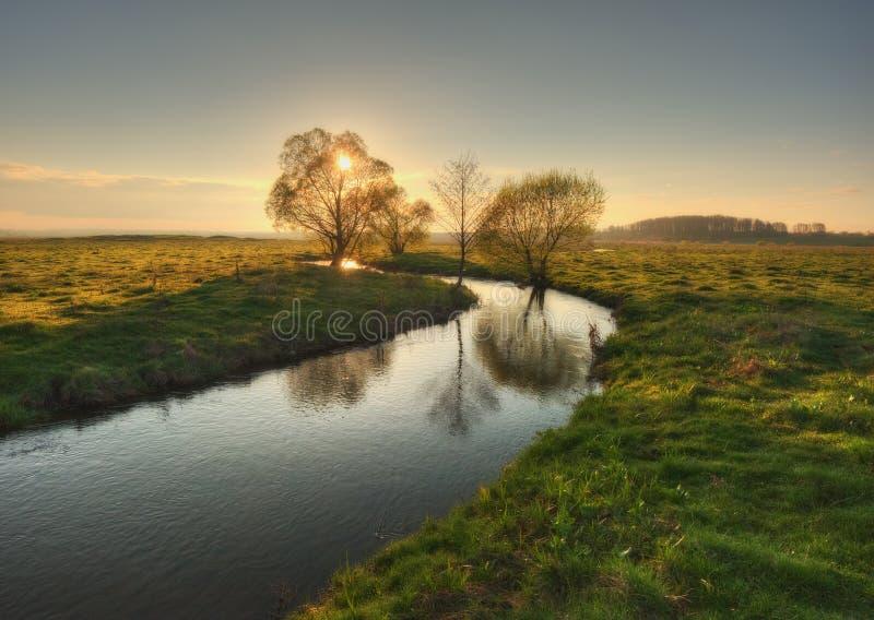 Vallée de matin de ressort de la rivière pittoresque Aube brumeuse photo libre de droits