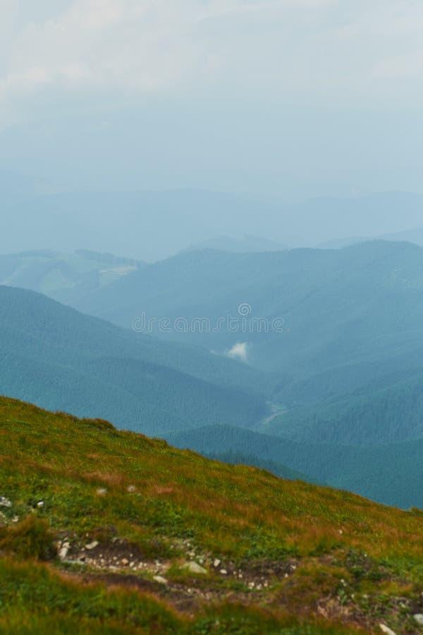 Vallée de montagne à la journée aménagez l'été normal Paysage coloré d'été dans les montagnes carpathiennes photo libre de droits