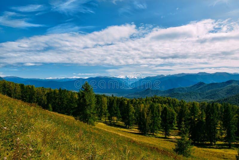 Vallée de montagne avec les arbres et le ciel nuageux, paysage d'or de panorama d'automne, République d'Altai photos libres de droits