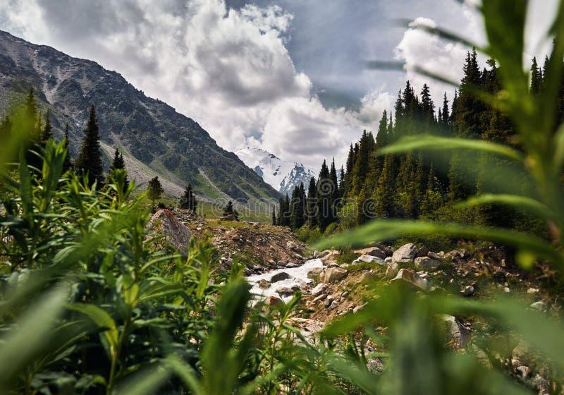 Vallée de montagne dans Kazakhstan photos libres de droits