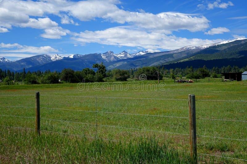 Vallée de montagne de Bitterroot - Montana image libre de droits
