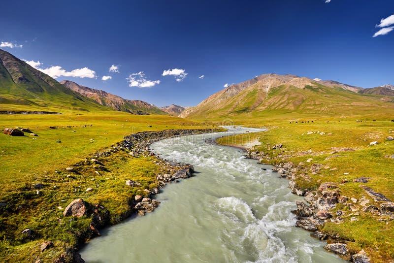 Vallée de montagne en le Kyrgyzstan image libre de droits