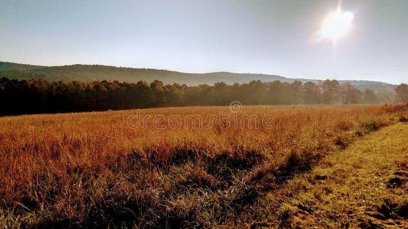 Vallée de montagne de l'Arkansas photographie stock